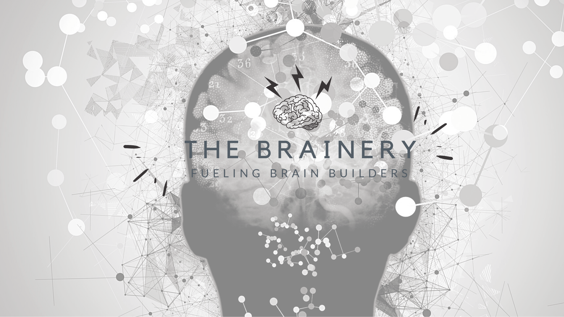 Copy of The Brainery (2)
